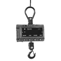 crane-scale-1